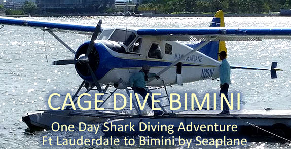 Cage Dive Bimini Island. Fly from Ft Lauderdale to Bimini by Seaplane. Full Day & Half Day charters.